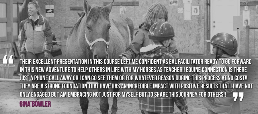 Become an Equine Assisted EAL Certified facilitator - horses helping people Equine Connection